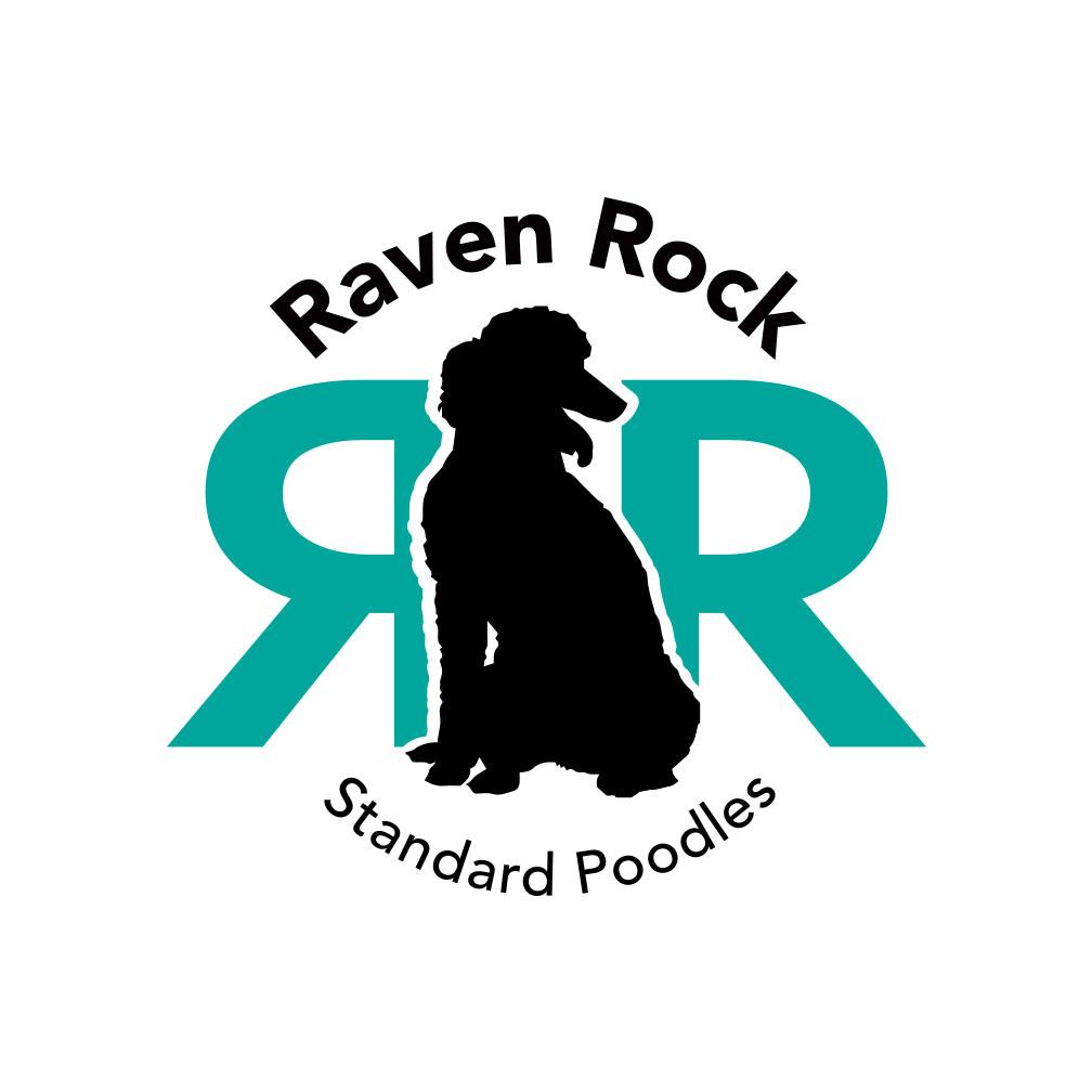 Raven Rock Standard Poodles
