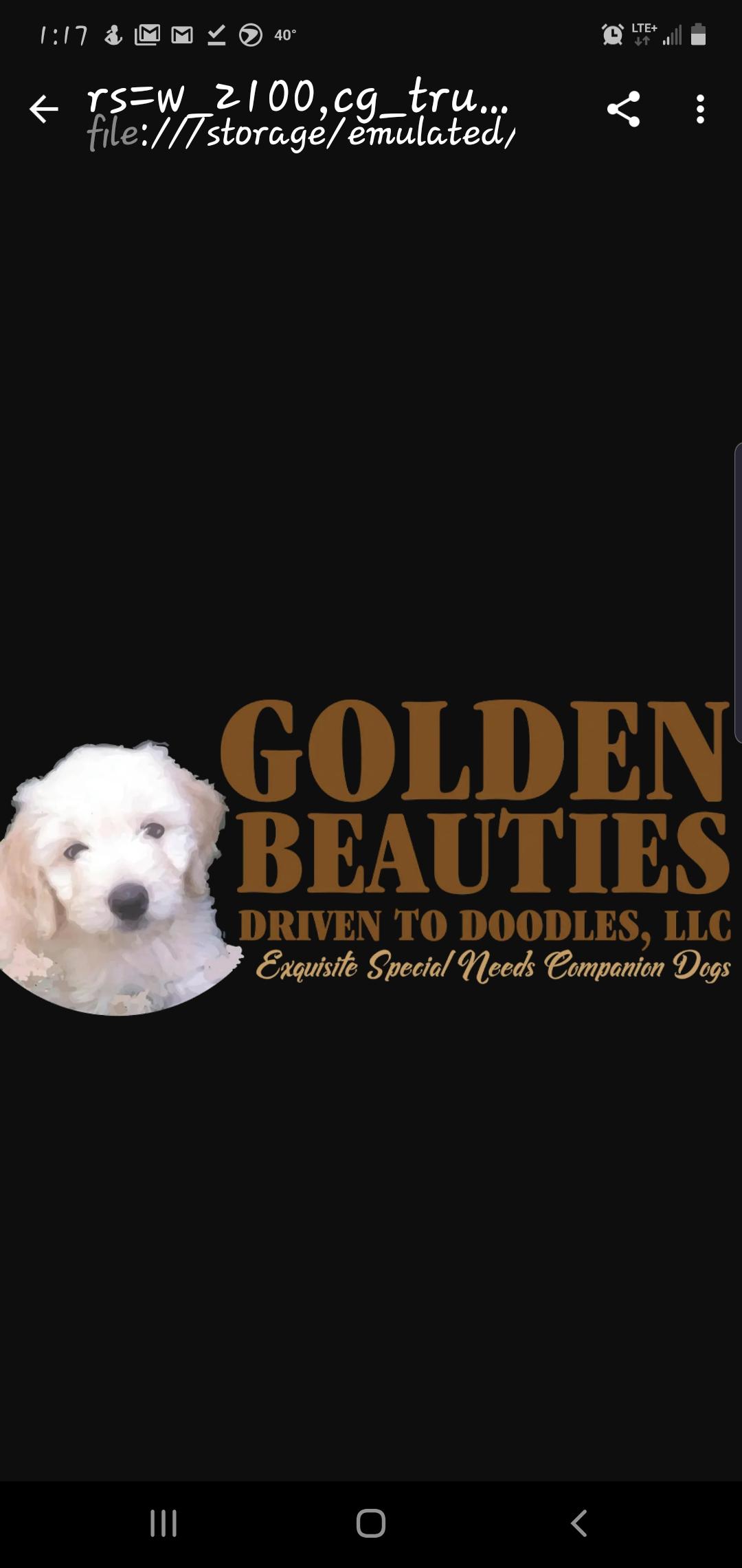 Golden Beauties Driven to Doodles, LLC