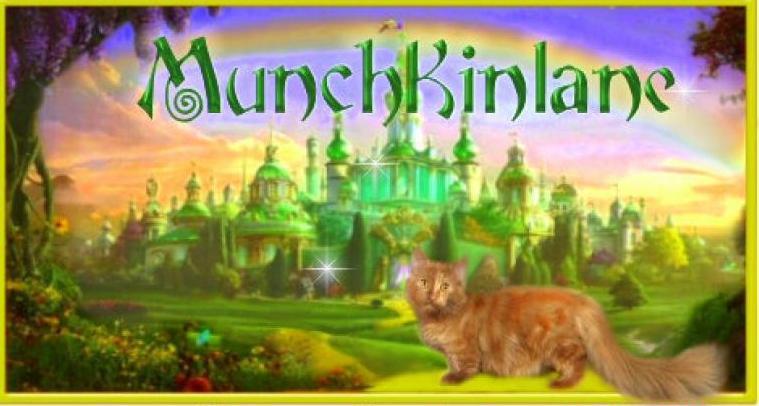 Munchkinlane Cattery