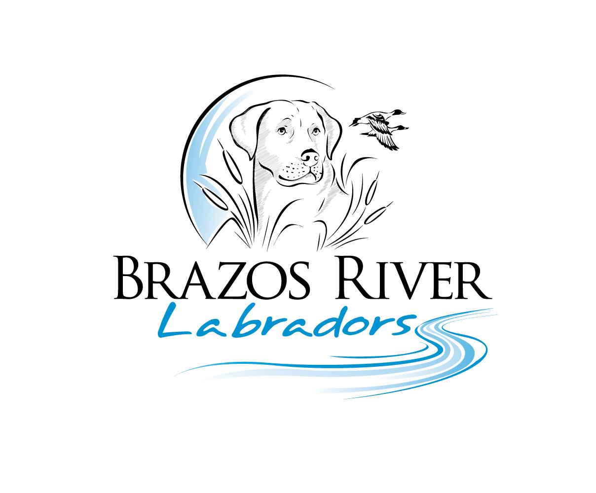 Brazos River Labradors